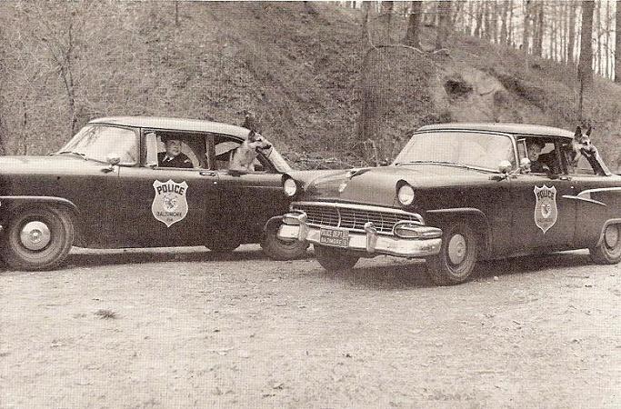 k-9 19569
