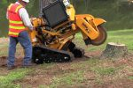 Stump-Grinding-Services